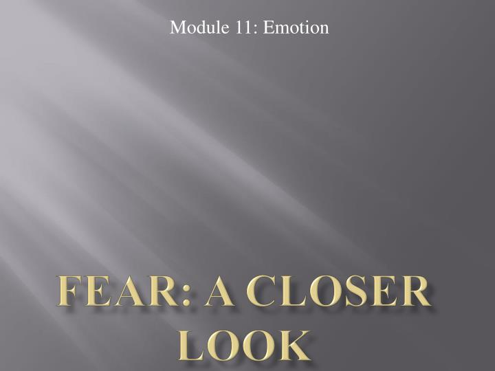 Fear: A Closer Look