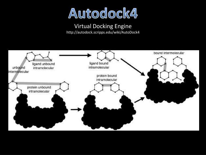 Autodock4