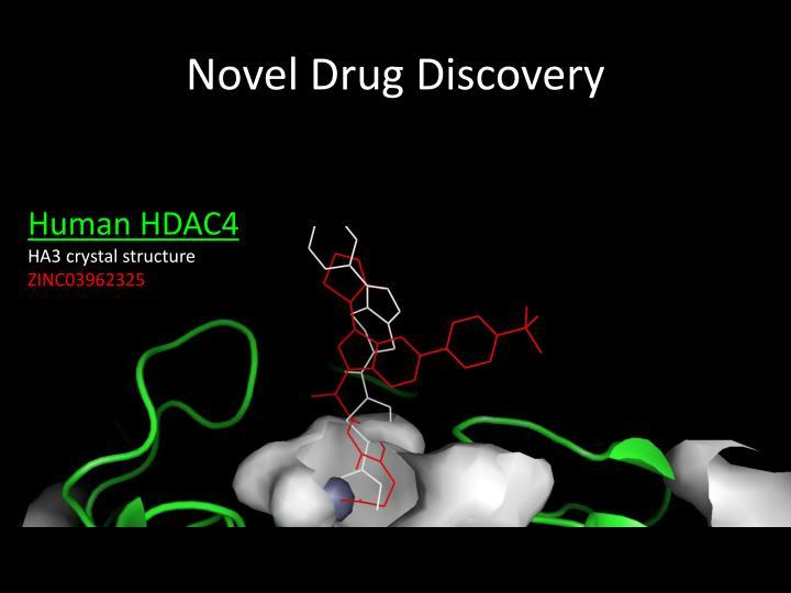 Novel Drug Discovery