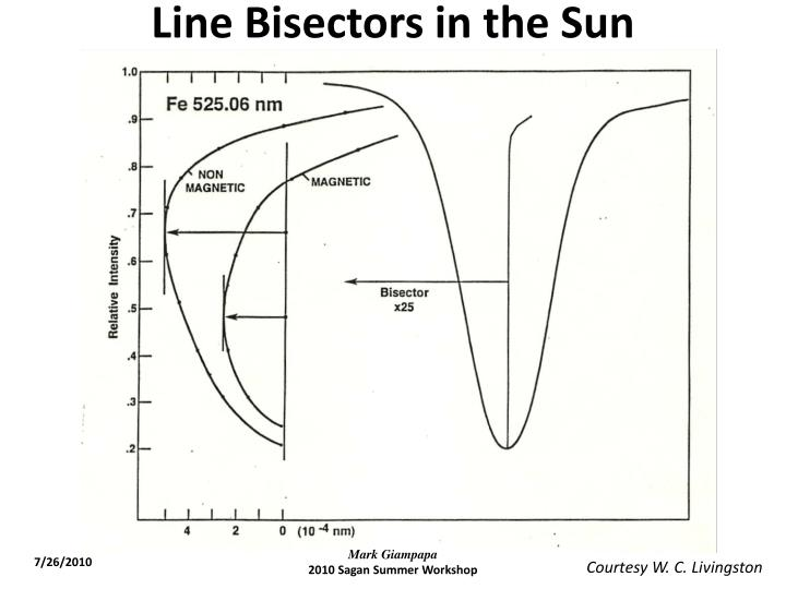 Line Bisectors in the Sun