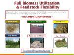 full biomass utilization feedstock flexibility