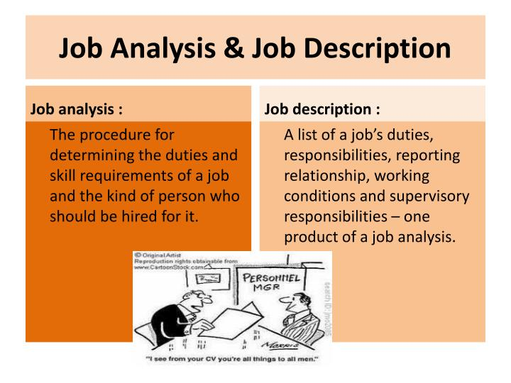 the different elements of a job description Description and job specification at the branch level branch manager practice some of the elements of the job description in day to day work such as.