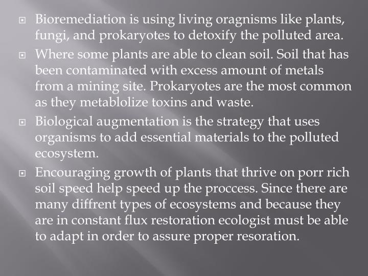 Bioremediation is using living