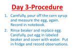day 3 procedure