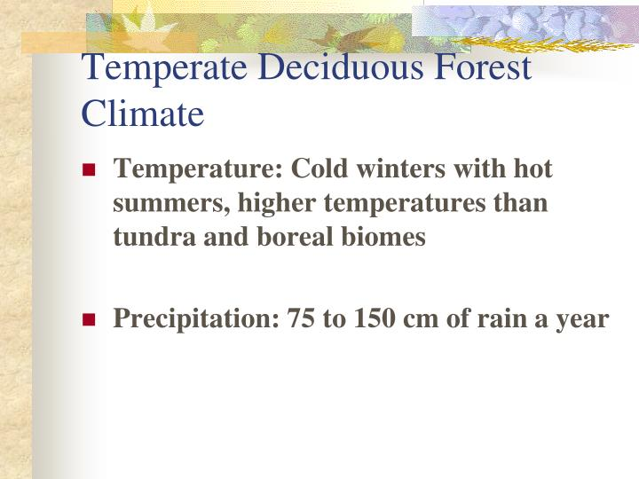 Temperate Deciduous Forest Climate