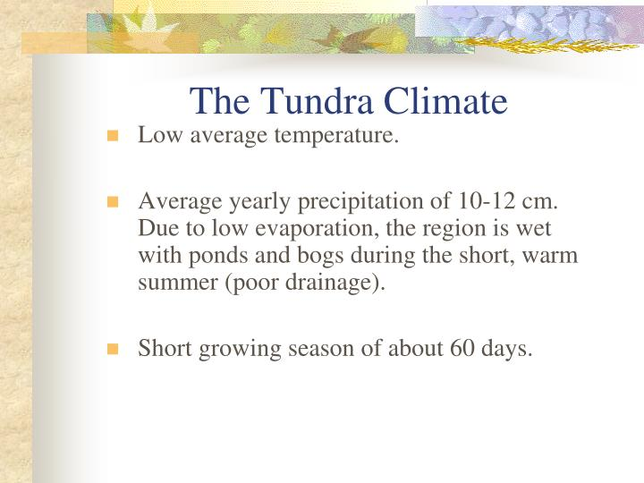 The Tundra Climate