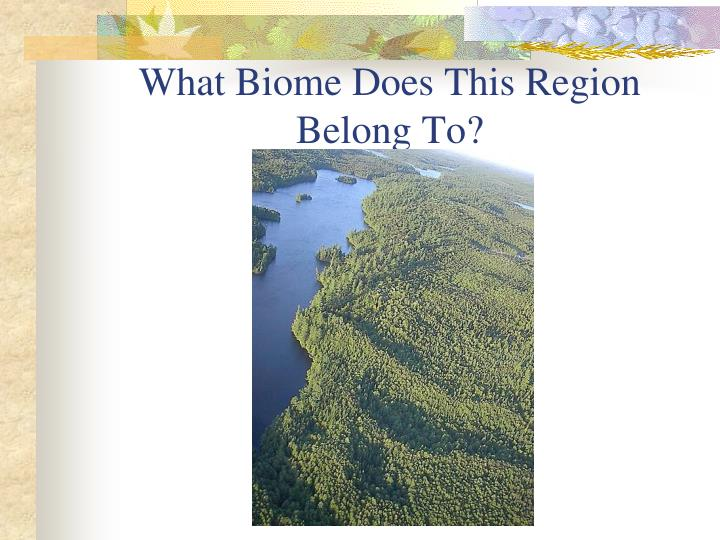What Biome Does This Region Belong To?