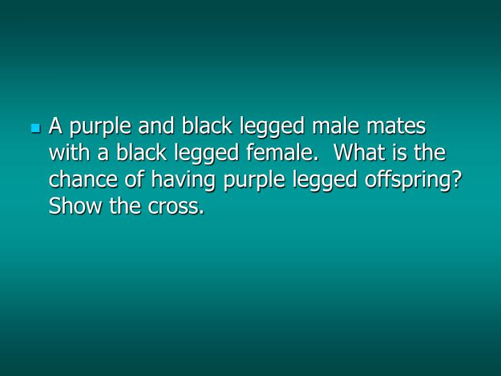 A purple and black legged male mates with a black legged female.  What is the chance of having purple legged offspring?  Show the cross.