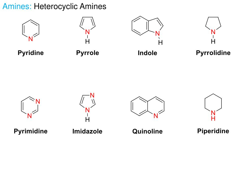 PPT - Section 9: Amines – Chapter 20 PowerPoint Presentation