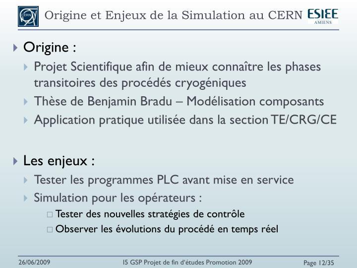 Origine et Enjeux de la Simulation au CERN