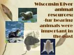 wisconsin river animal resources fur bearing animals were important in the past