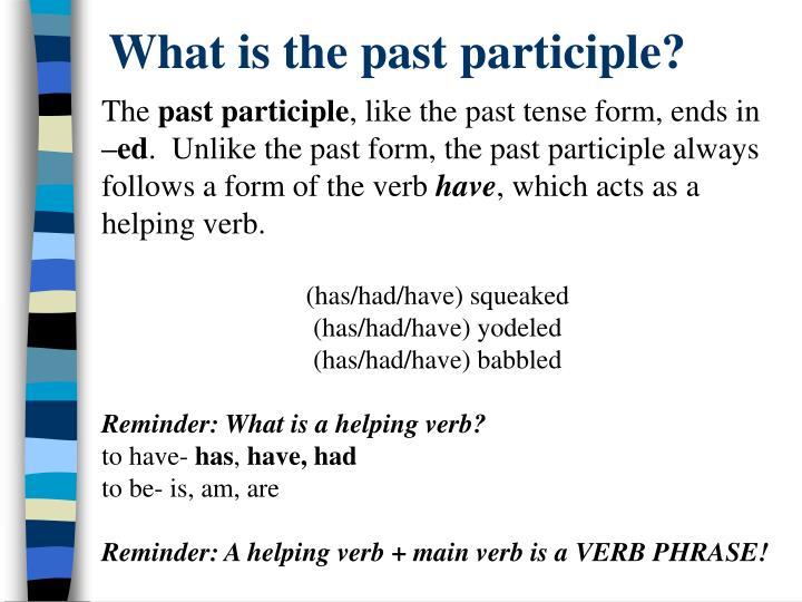past tense of has