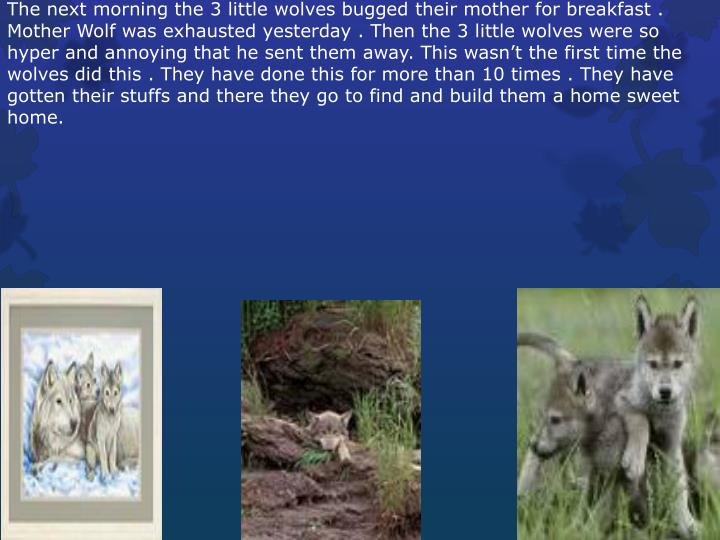 The next morning the 3 little wolves bugged their mother for breakfast . Mother Wolf was exhausted y...