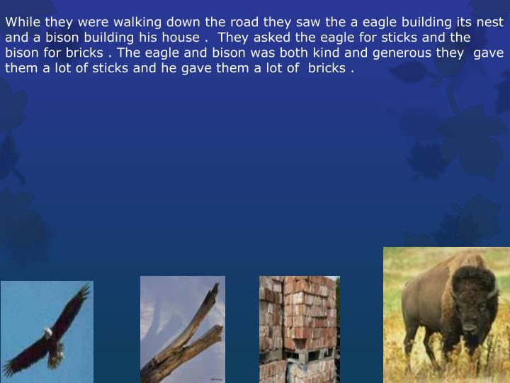 While they were walking down the road they saw the a eagle building its nest and a bison building his house .  They asked the eagle for sticks and the bison for bricks . The eagle and bison was both kind and generous they  gave them a lot of sticks and he gave them a lot of  bricks .