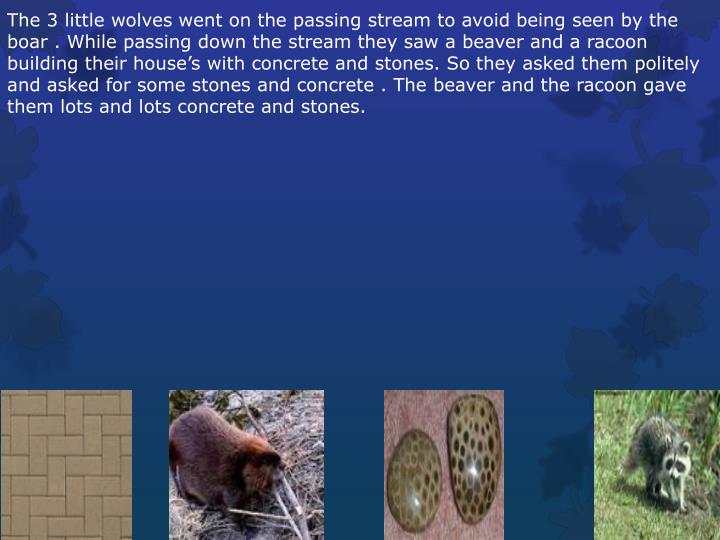 The 3 little wolves went on the passing stream to avoid being seen by the boar .