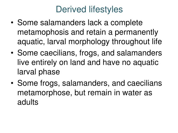 Derived lifestyles