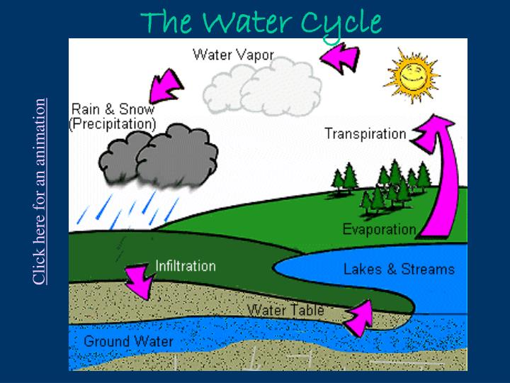 ppt - the water cycle powerpoint presentation