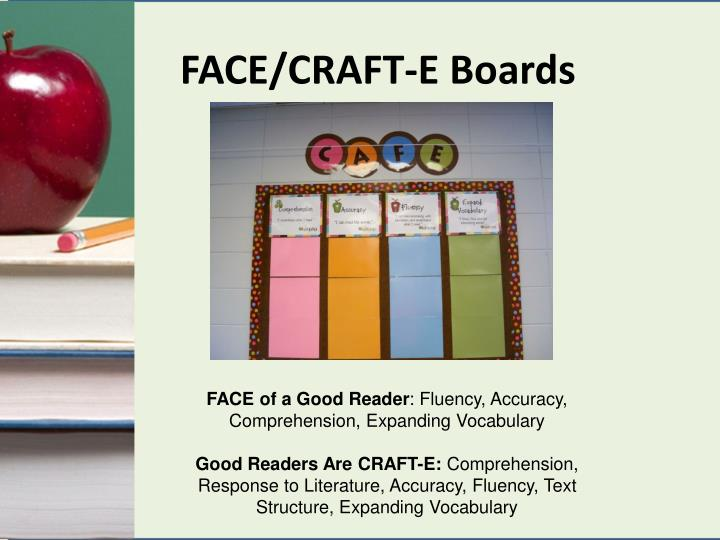 FACE/CRAFT-E Boards