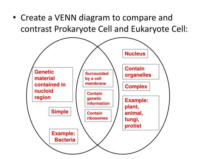 Create A Venn Diagram Comparing Osmosis And Diffusion Goalblockety