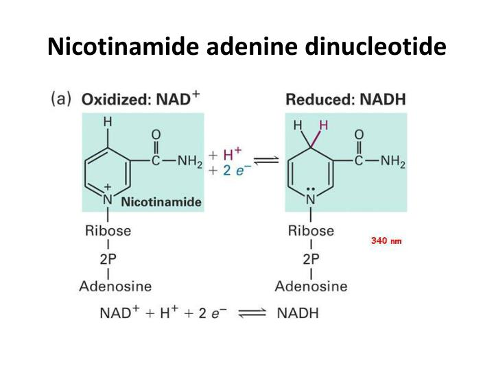 Nicotinamide