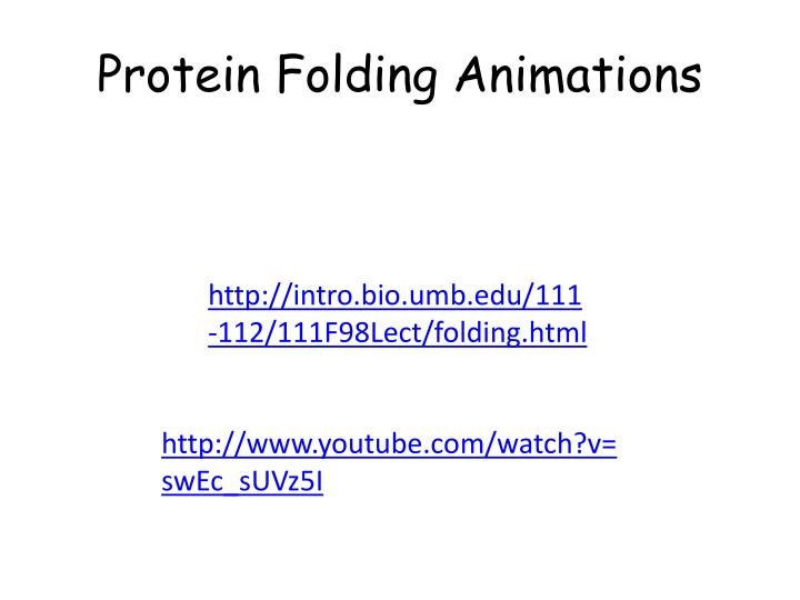 Protein Folding Animations