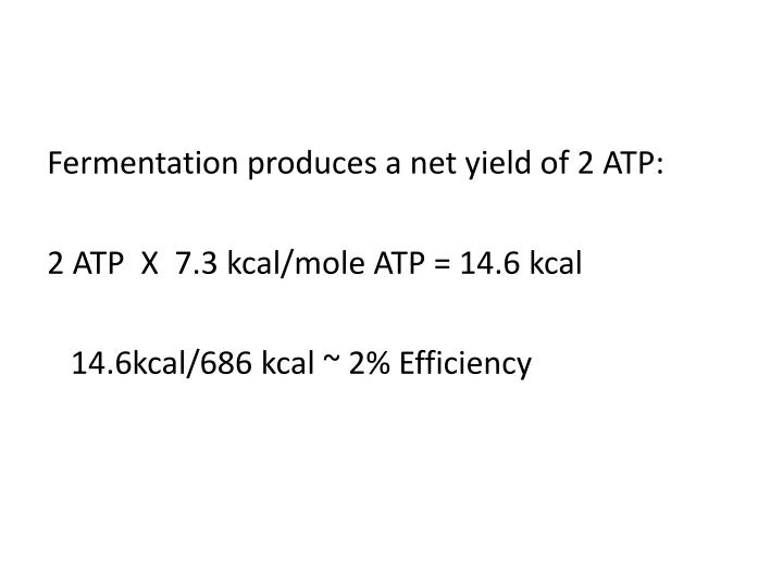 Fermentation produces a net yield of 2 ATP: