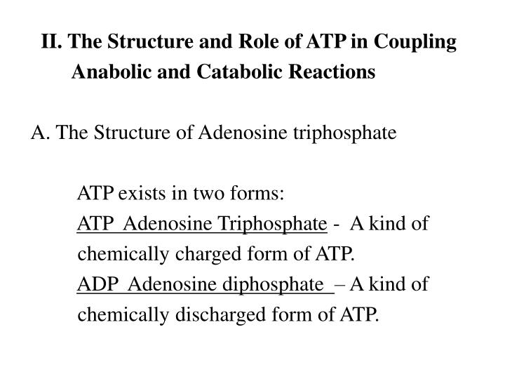 II. The Structure and Role of ATP in Coupling