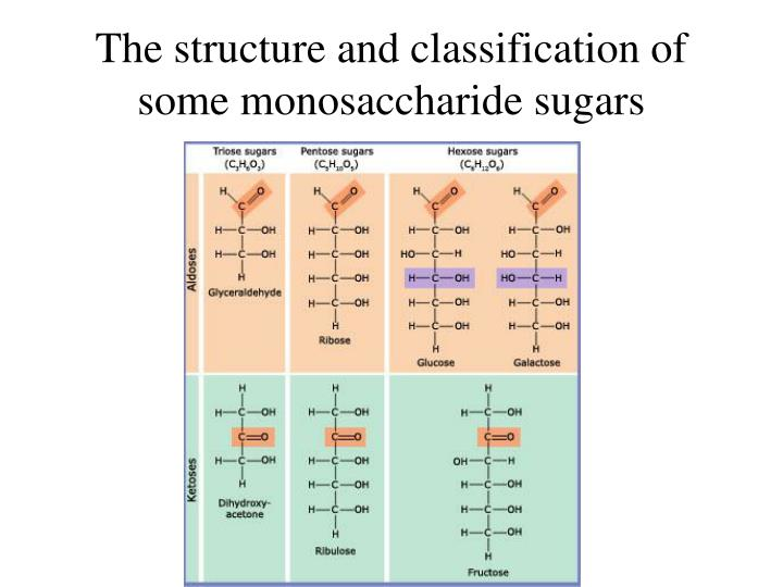 The structure and classification of some monosaccharide sugars