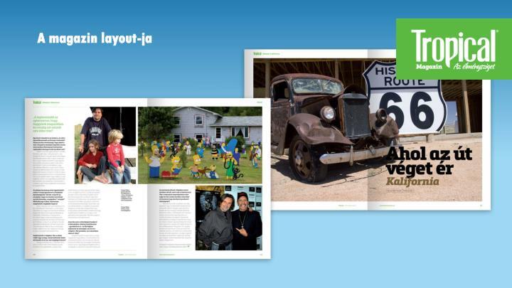 A magazin layout-ja