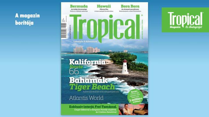 A magazin