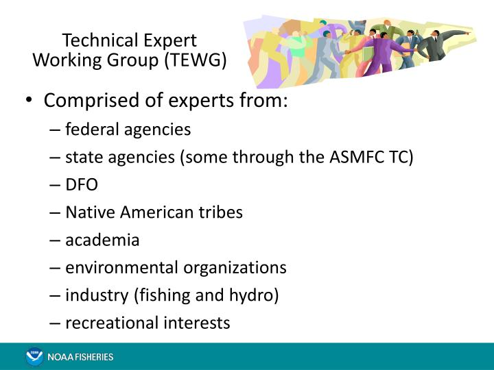 Technical Expert Working Group (TEWG)