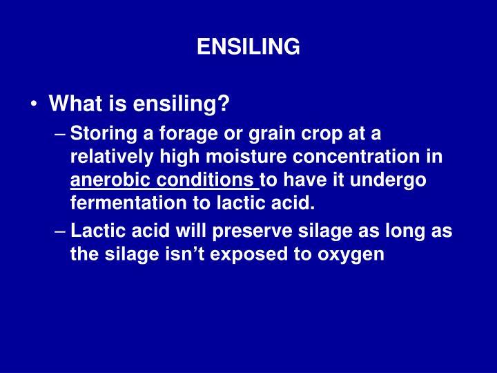 Ensiling
