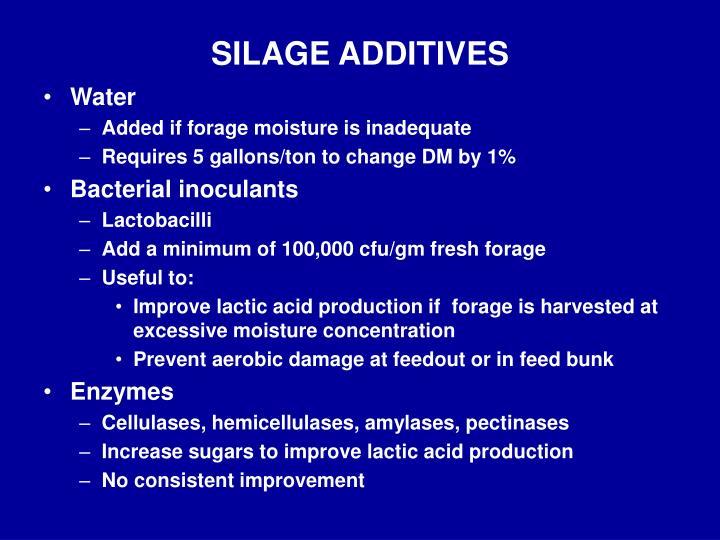 SILAGE ADDITIVES