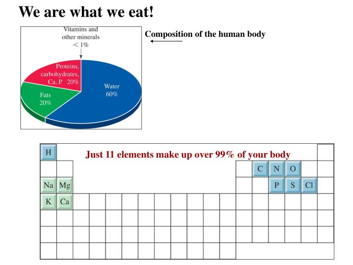 We are what we eat!