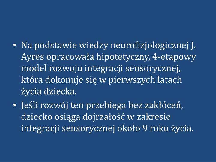 Na podstawie wiedzy neurofizjologicznej J. Ayres opracowała hipotetyczny, 4-etapowy model rozwoju integracji sensorycznej, która dokonuje się w pierwszych latach życia dziecka.