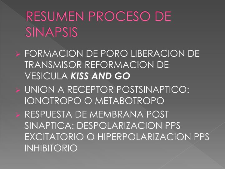 RESUMEN PROCESO DE SINAPSIS