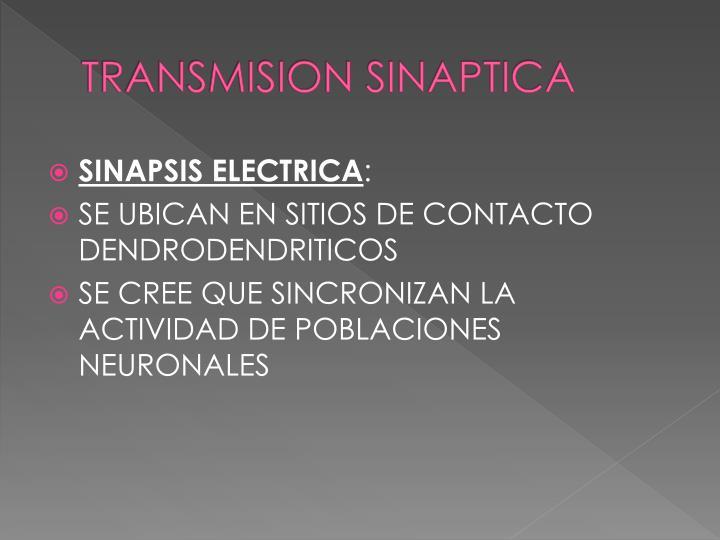 TRANSMISION SINAPTICA