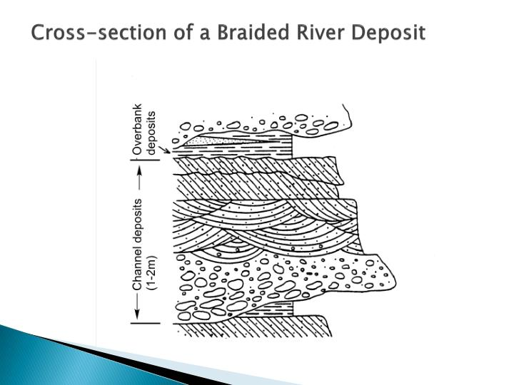 Cross-section of a Braided River Deposit
