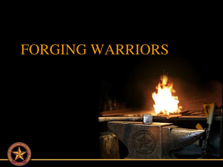 forging warriors n.