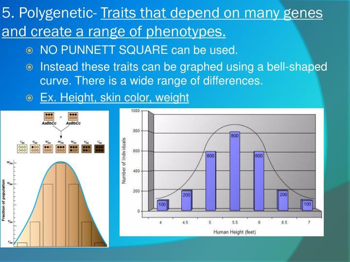 5. Polygenetic-