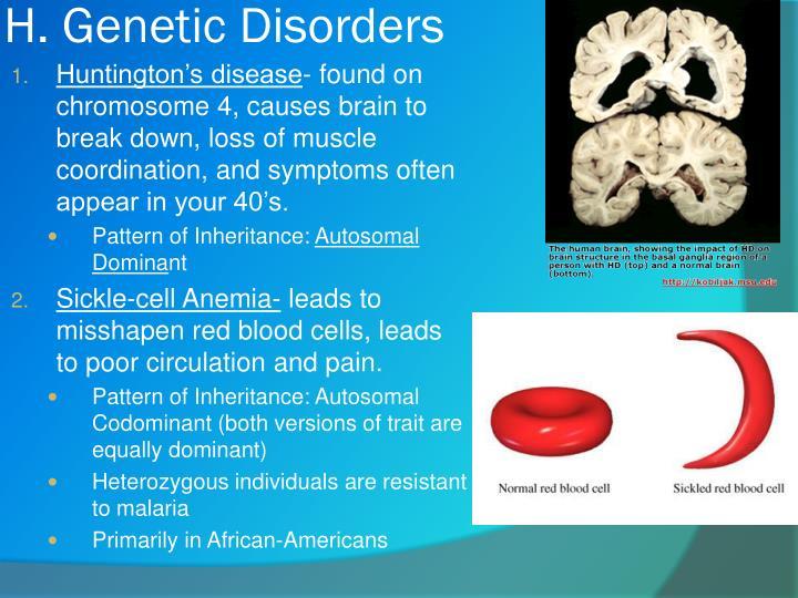 H. Genetic Disorders