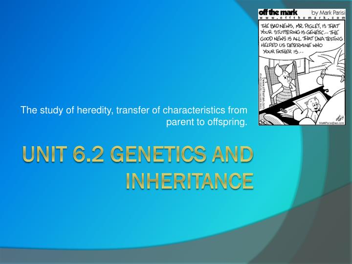 The study of heredity, transfer of characteristics from parent to offspring.