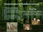 characteristics of woodland animals