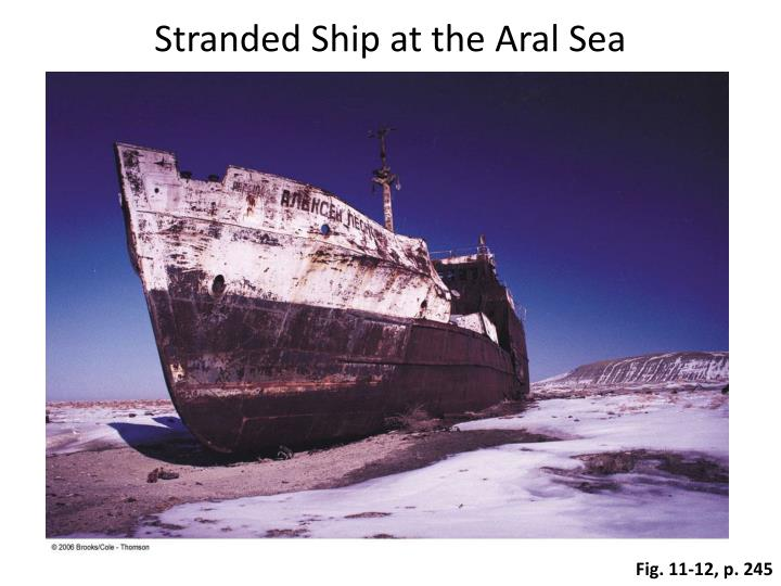 an analysis of the aral sea Aral sea introduction the aral sea is located in the lowlands of turan occupying land in the republics of kazakstan and uzbekistan from ancient times it was known as an oasis.
