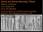 darius and xerxes receiving tribute