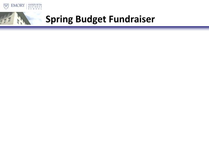 Spring Budget Fundraiser