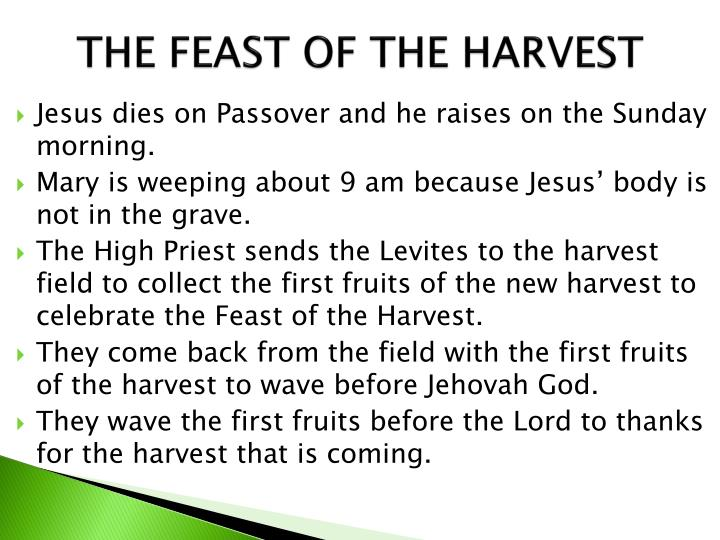 THE FEAST OF THE HARVEST