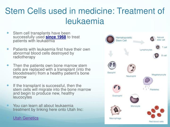 Stem Cells used in medicine: Treatment of