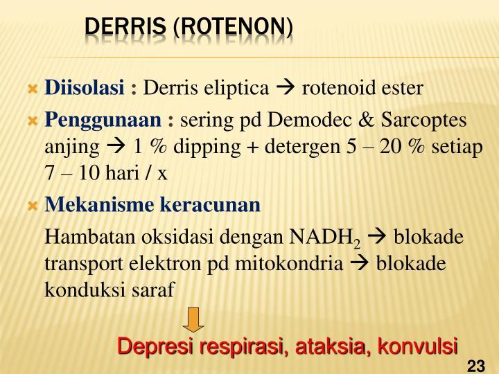 Diisolasi