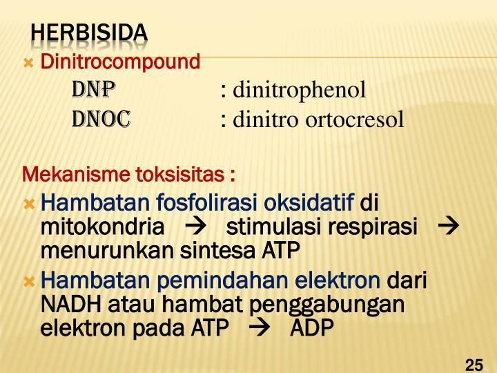 Dinitrocompound